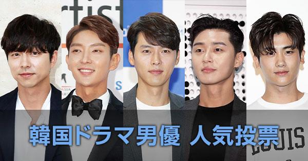 韓国ドラマ男優 人気投票